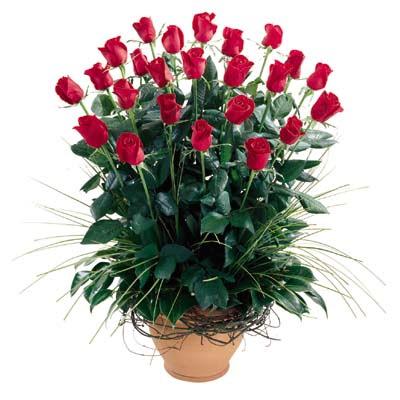 Muş uluslararası çiçek gönderme  10 adet kirmizi gül cam yada mika vazo