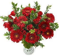 5 adet kirmizi gül 5 adet gerbera aranjmani  Muş hediye çiçek yolla