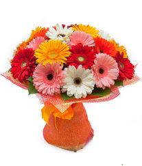 Renkli gerbera buketi  Muş anneler günü çiçek yolla