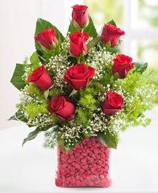 Cam içerisinde 9 adet kırmızı gül  Muş internetten çiçek satışı