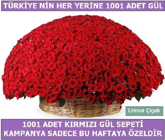 1001 Adet kırmızı gül Bu haftaya özel  Muş İnternetten çiçek siparişi