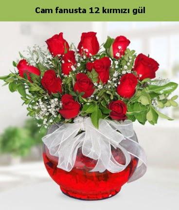 Cam içerisinde 12 adet kırmızı gül  Muş internetten çiçek satışı