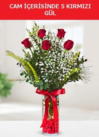 Cam içerisinde 5 adet kırmızı gül  Muş çiçek siparişi sitesi