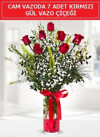 Cam vazoda 7 adet kırmızı gül çiçeği  Muş çiçek gönderme sitemiz güvenlidir
