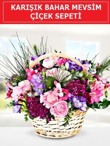 Karışık mevsim bahar çiçekleri  Muş ucuz çiçek gönder