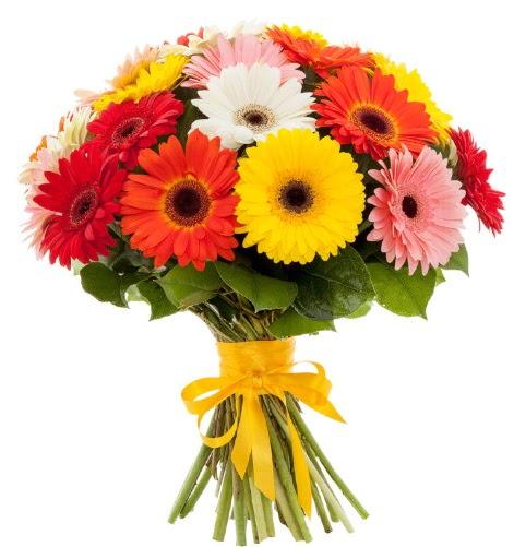 Gerbera demeti buketi  Muş çiçek satışı