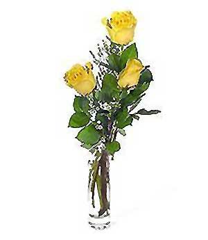 Muş internetten çiçek siparişi  3 adet kalite cam yada mika vazo gül