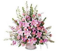 Muş çiçek siparişi sitesi  Tanzim mevsim çiçeklerinden çiçek modeli