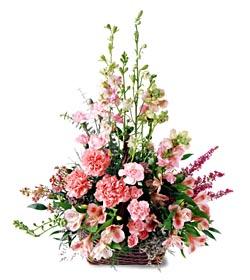 Muş ucuz çiçek gönder  mevsim çiçeklerinden özel