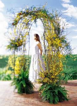 Muş internetten çiçek satışı  güller ve mevsim çiçegi
