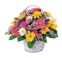 Muş çiçek , çiçekçi , çiçekçilik  mevsim çiçekleri sepeti özel
