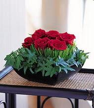 Muş çiçek siparişi sitesi  10 adet kare mika yada cam vazoda gül tanzim