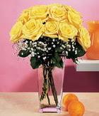 Muş internetten çiçek satışı  9 adet sari güllerden cam yada mika vazo