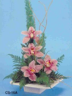 Muş çiçekçi telefonları  vazoda 4 adet orkide
