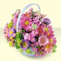 Muş yurtiçi ve yurtdışı çiçek siparişi  bir sepet dolusu kir çiçegi  Muş çiçek gönderme sitemiz güvenlidir