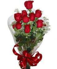 9 adet kaliteli kirmizi gül   Muş online çiçekçi , çiçek siparişi