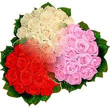 3 renkte gül seven sever   Muş çiçek , çiçekçi , çiçekçilik