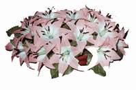 yapay karisik çiçek sepeti   Muş çiçekçi mağazası
