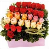 15 adet renkli gül ve cam   Muş çiçekçi mağazası