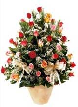 91 adet renkli gül aranjman   Muş çiçek gönderme sitemiz güvenlidir