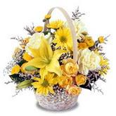 sadece sari çiçek sepeti   Muş çiçek gönderme sitemiz güvenlidir