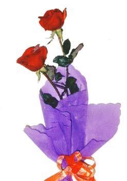 2  adet kirmizi gül buketi   Muş çiçek , çiçekçi , çiçekçilik