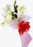 Muş çiçek , çiçekçi , çiçekçilik  ince vazoda gerbera ve ayi