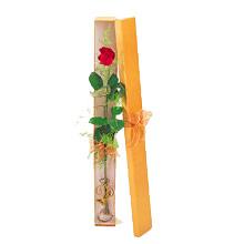 ince  kutuda  1  gül   Muş çiçek yolla