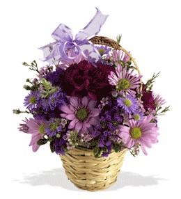 Muş uluslararası çiçek gönderme  sepet içerisinde krizantem çiçekleri