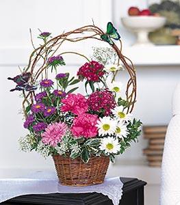 Muş cicekciler , cicek siparisi  sepet içerisinde karanfil gerbera ve kir çiçekleri