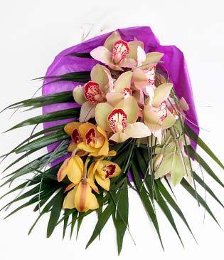 Muş cicekciler , cicek siparisi  1 adet dal orkide buket halinde sunulmakta