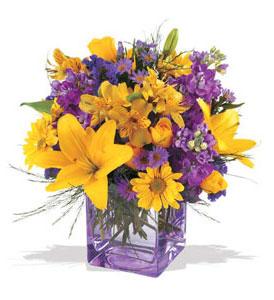 Muş çiçek mağazası , çiçekçi adresleri  cam içerisinde kir çiçekleri demeti