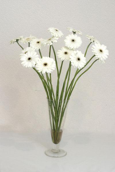 Muş çiçek mağazası , çiçekçi adresleri  cam vazo içerisinde 17 adet sade gerbera