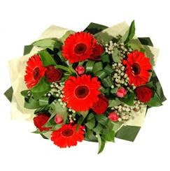 Muş ucuz çiçek gönder   5 adet kirmizi gül 5 adet gerbera demeti