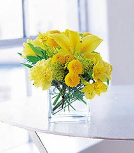 Muş ucuz çiçek gönder  sarinin sihri cam içinde görsel sade çiçekler