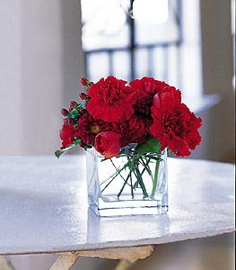 Muş ucuz çiçek gönder  kirmizinin sihri cam içinde görsel sade çiçekler