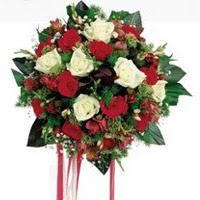 Muş ucuz çiçek gönder  6 adet kirmizi 6 adet beyaz ve kir çiçekleri buket