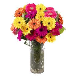 KARISIK GERBERALARDAN CAM VAZO TANZIMI  Muş güvenli kaliteli hızlı çiçek