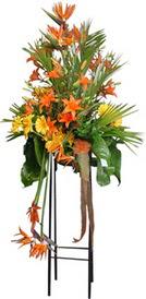 Muş çiçek siparişi sitesi  perförje tanzimi dügün nikah ve açilislara