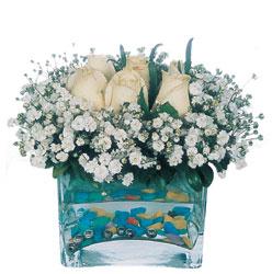 Muş çiçekçi mağazası  mika yada cam içerisinde 7 adet beyaz gül