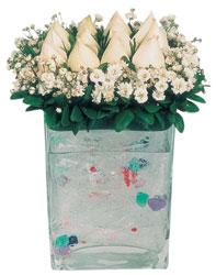 Muş çiçekçi mağazası  7 adet beyaz gül cam yada mika vazo tanzim