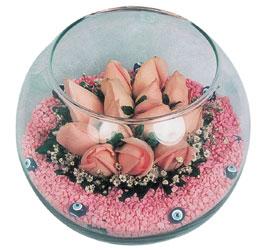Muş internetten çiçek satışı  cam fanus içerisinde 10 adet gül