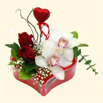 Muş hediye sevgilime hediye çiçek  1 kandil orkide 5 adet kirmizi gül mika kalp