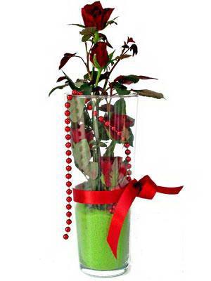 Muş online çiçek gönderme sipariş  Cam yada mika içerisinde 9 adet kirmizi gül - sevdiklerinize özel