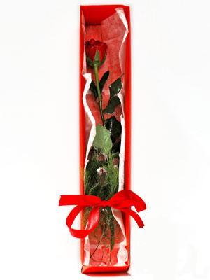 Muş yurtiçi ve yurtdışı çiçek siparişi  1 adet kutuda gül