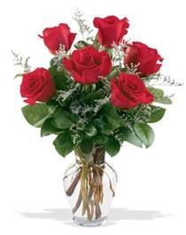 Muş çiçek gönderme sitemiz güvenlidir  7 adet kirmizi gül cam yada mika vazoda sevenlere
