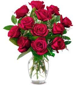Muş online çiçek gönderme sipariş  1 düzine kirmizi gül sevenlere özel vazo gülleri