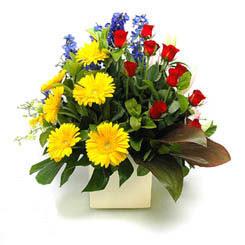 Muş online çiçek gönderme sipariş  9 adet gül ve kir çiçekleri cam yada mika vazoda