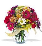 Muş çiçek , çiçekçi , çiçekçilik  cam yada mika vazo içerisinde karisik kir çiçekleri
