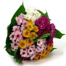 Muş çiçekçi telefonları  Karisik kir çiçekleri demeti herkeze